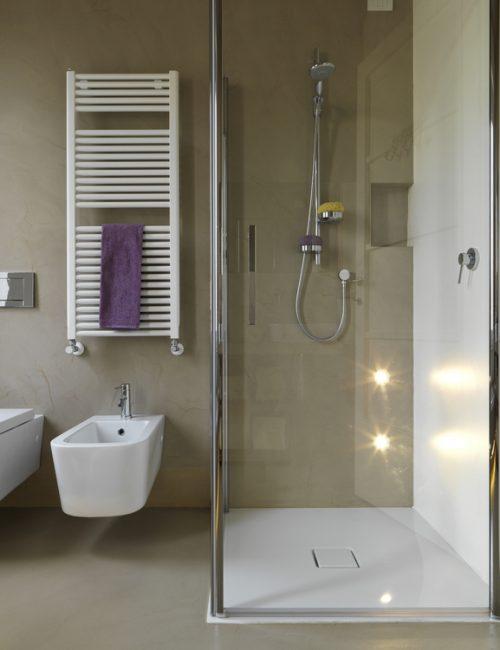 shower partition 5